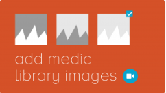 Add Media Library Images